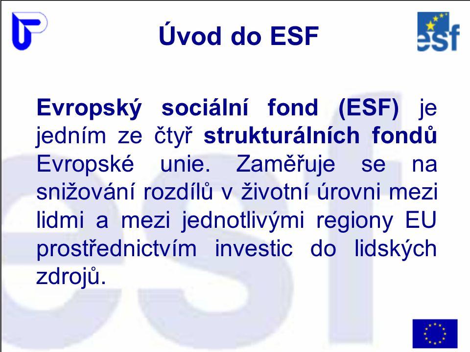 Hlavním posláním finanční pomoci z ESF je rozvíjení zaměstnanosti, snižování nezaměstnanosti, podpora sociálního začleňování osob a rovných příležitostí se zaměřením na rozvoj trhu práce a lidských zdrojů.