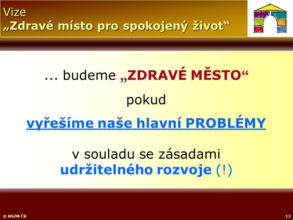 """Vize """"Zdravé místo pro spokojený život © NSZM ČR13..."""