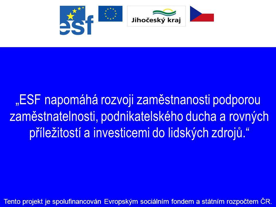 Odkazy Informace o ESF: www.esfcr.czwww.esfcr.cz WWW Konečného příjemce:http://www.kraj-jihocesky.czhttp://www.kraj-jihocesky.cz Informace o strukturá