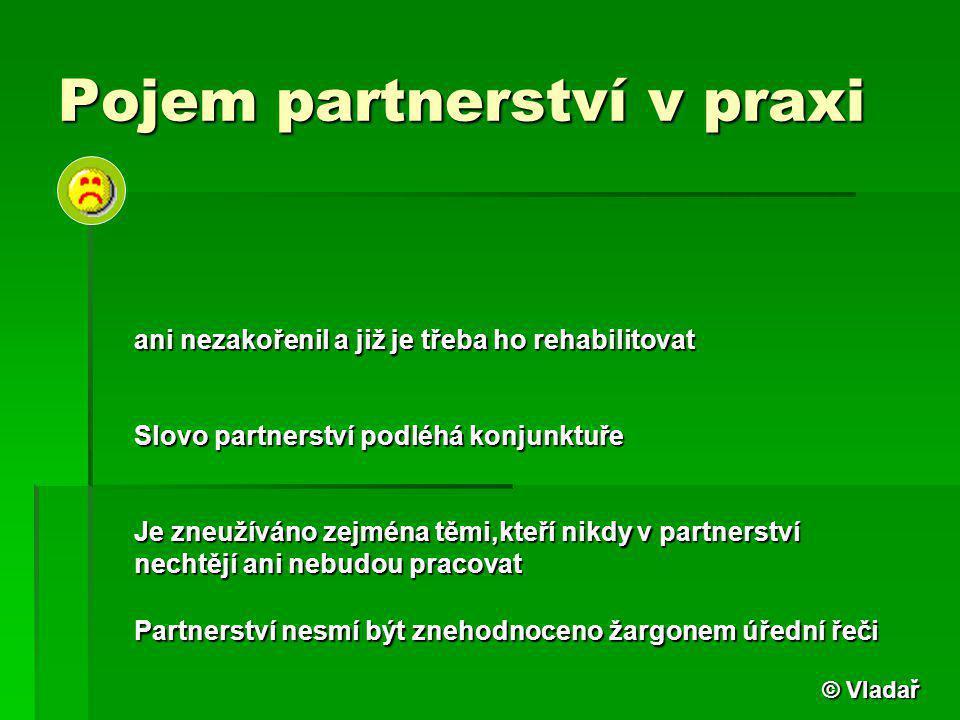 Pojem partnerství v praxi ani nezakořenil a již je třeba ho rehabilitovat Slovo partnerství podléhá konjunktuře Je zneužíváno zejména těmi,kteří nikdy