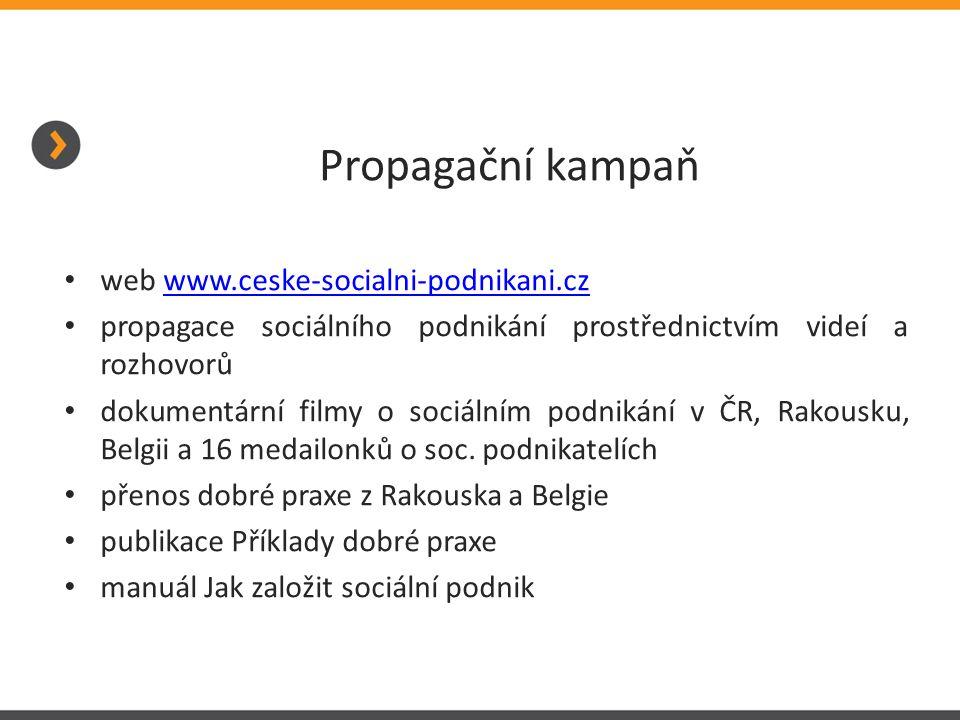Propagační kampaň web www.ceske-socialni-podnikani.czwww.ceske-socialni-podnikani.cz propagace sociálního podnikání prostřednictvím videí a rozhovorů dokumentární filmy o sociálním podnikání v ČR, Rakousku, Belgii a 16 medailonků o soc.