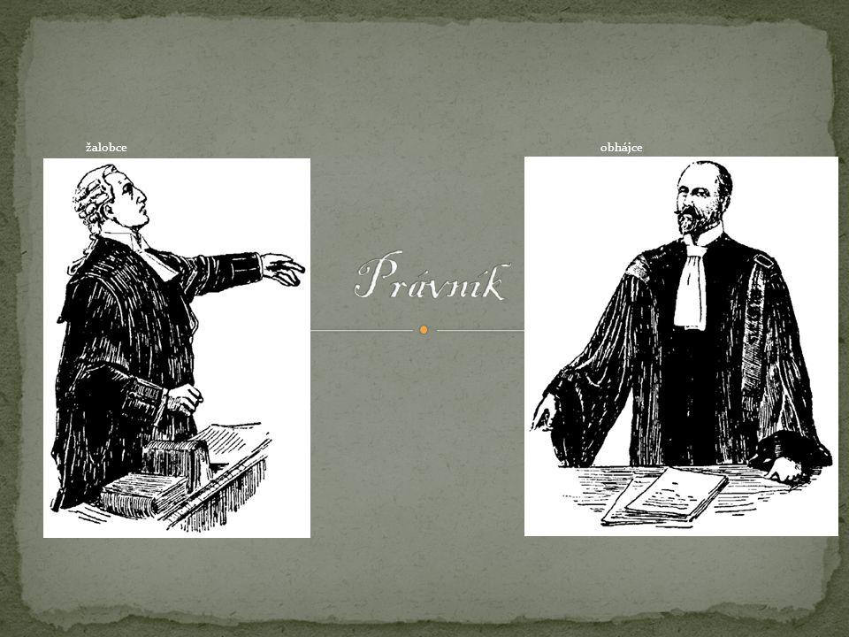 Vytvořil: J.Š.Čejka Zdroj: http://cs.wikipedia.org/wiki/Pr%C3%A1vn%C3%ADk a domácí zdrojehttp://cs.wikipedia.org/wiki/Pr%C3%A1vn%C3%ADk