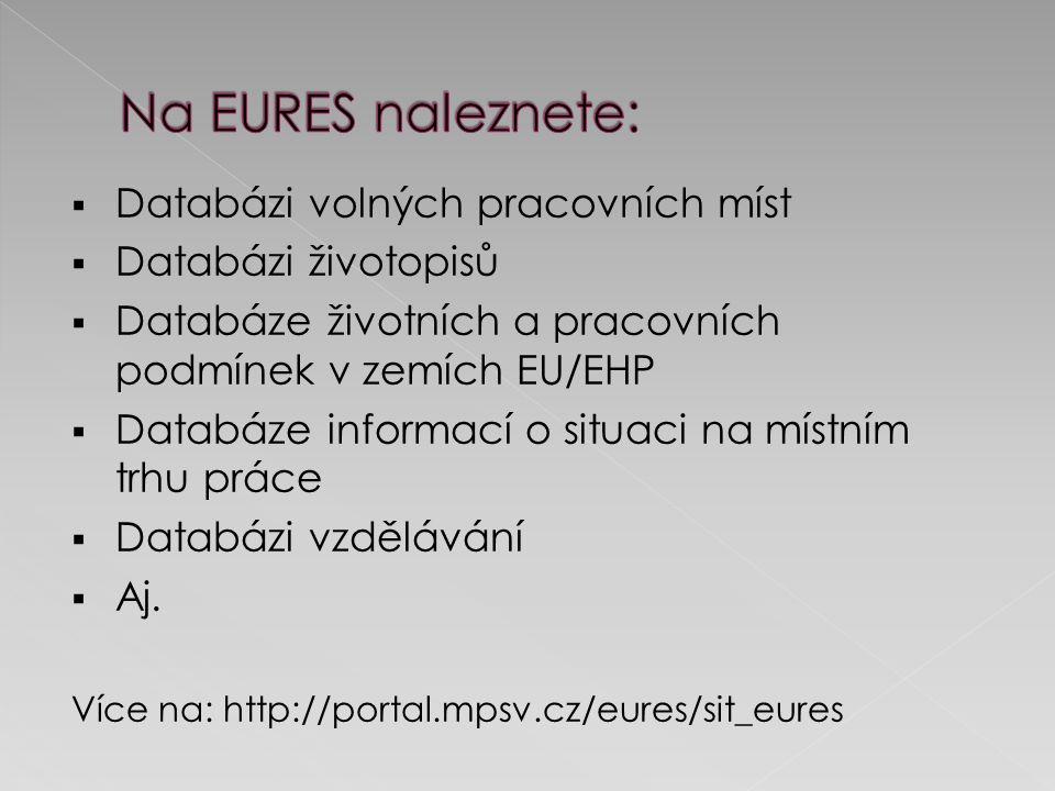  Databázi volných pracovních míst  Databázi životopisů  Databáze životních a pracovních podmínek v zemích EU/EHP  Databáze informací o situaci na místním trhu práce  Databázi vzdělávání  Aj.