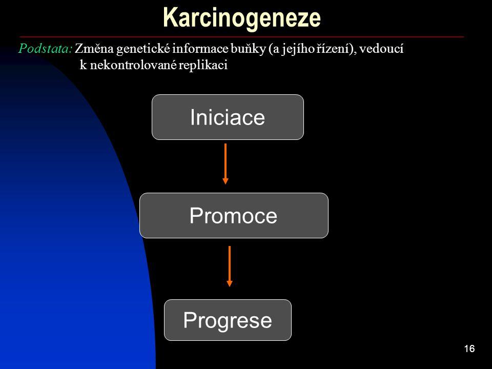 16 Karcinogeneze Iniciace Promoce Progrese Podstata: Změna genetické informace buňky (a jejího řízení), vedoucí k nekontrolované replikaci