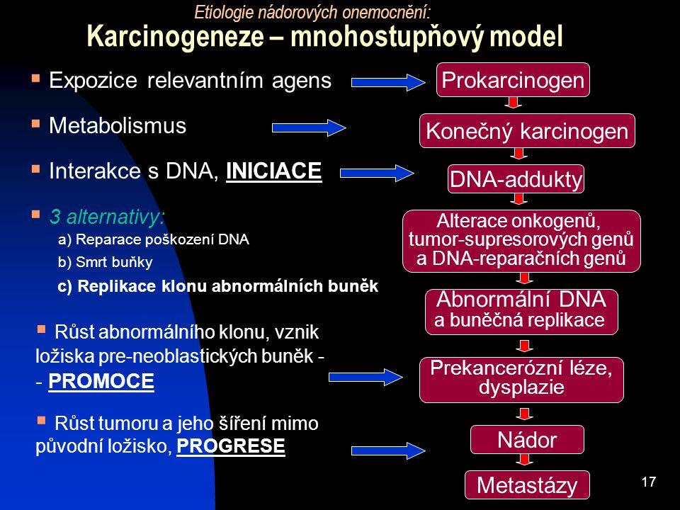 17 Karcinogeneze – mnohostupňový model Etiologie nádorových onemocnění: Prokarcinogen Konečný karcinogen Alterace onkogenů, tumor-supresorových genů a