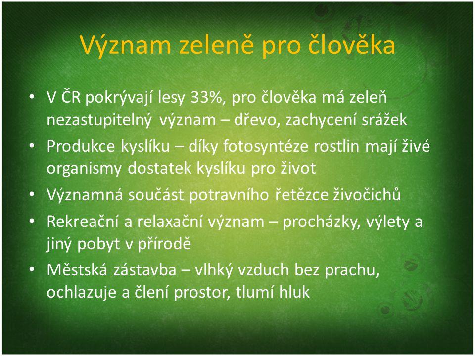 Význam zeleně pro člověka V ČR pokrývají lesy 33%, pro člověka má zeleň nezastupitelný význam – dřevo, zachycení srážek Produkce kyslíku – díky fotosy