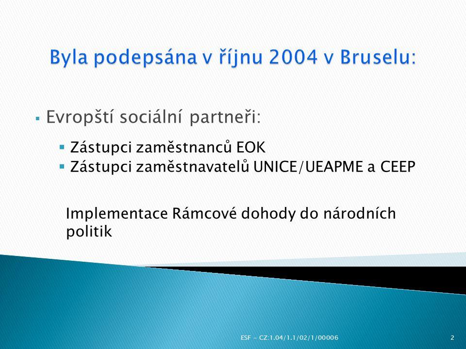  Evropští sociální partneři:  Zástupci zaměstnanců EOK  Zástupci zaměstnavatelů UNICE/UEAPME a CEEP ESF - CZ:1.04/1.1/02/1/000062 Implementace Rámc