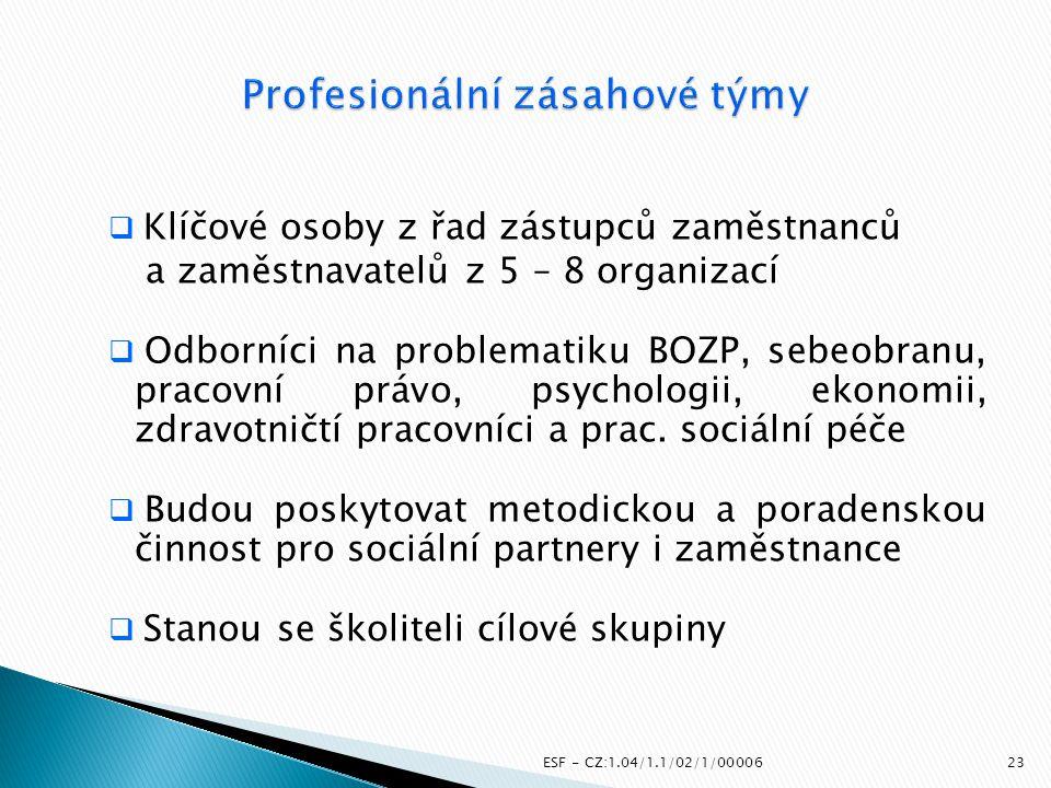 ESF - CZ:1.04/1.1/02/1/00006  Klíčové osoby z řad zástupců zaměstnanců a zaměstnavatelů z 5 – 8 organizací  Odborníci na problematiku BOZP, sebeobra