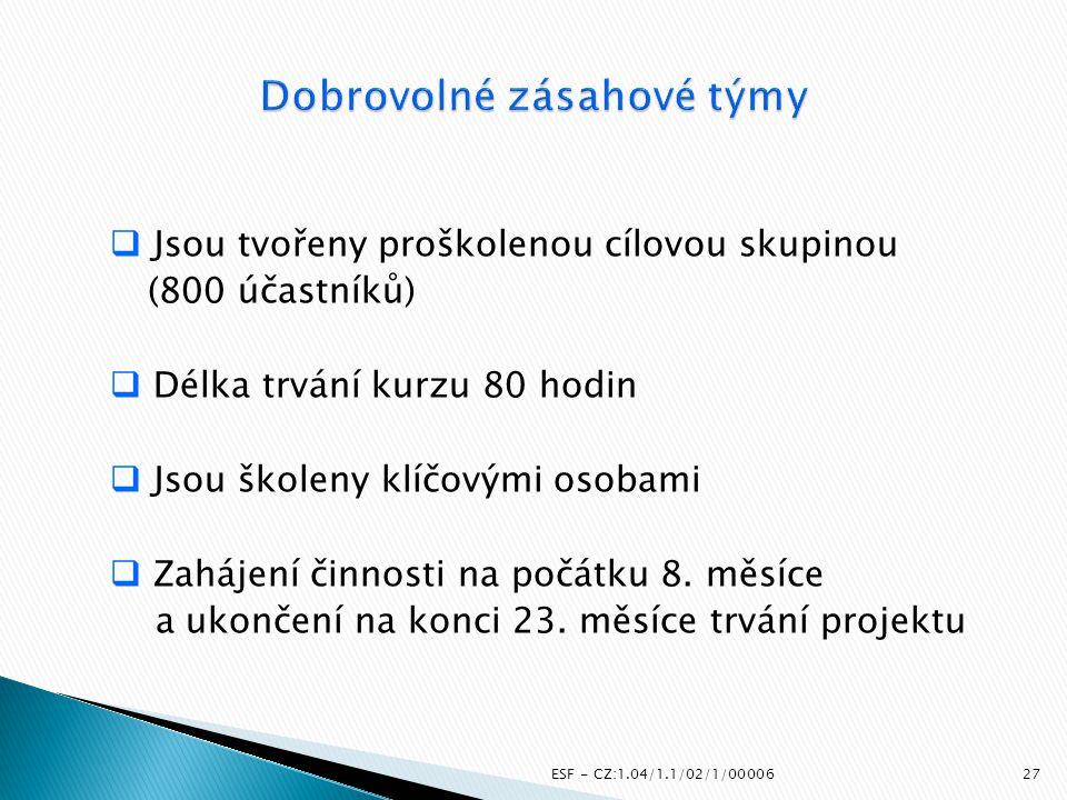 ESF - CZ:1.04/1.1/02/1/00006  Jsou tvořeny proškolenou cílovou skupinou (800 účastníků)  Délka trvání kurzu 80 hodin  Jsou školeny klíčovými osobam