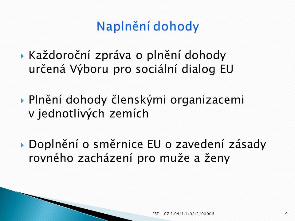  Každoroční zpráva o plnění dohody určená Výboru pro sociální dialog EU  Plnění dohody členskými organizacemi v jednotlivých zemích  Doplnění o smě