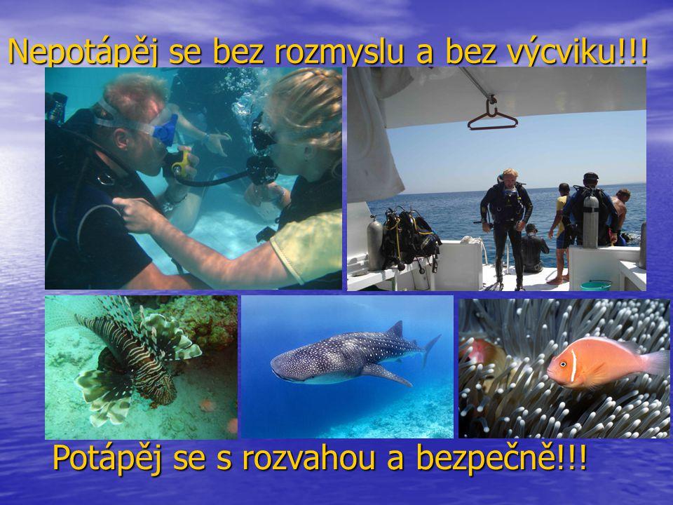 Nepotápěj se bez rozmyslu a bez výcviku!!! Potápěj se s rozvahou a bezpečně!!!