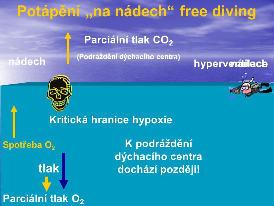 """Potápění """"na nádech"""" free diving nádech Parciální tlak CO 2 (Podráždění dýchacího centra) nádech hyperventilace K podráždění dýchacího centra dochází"""