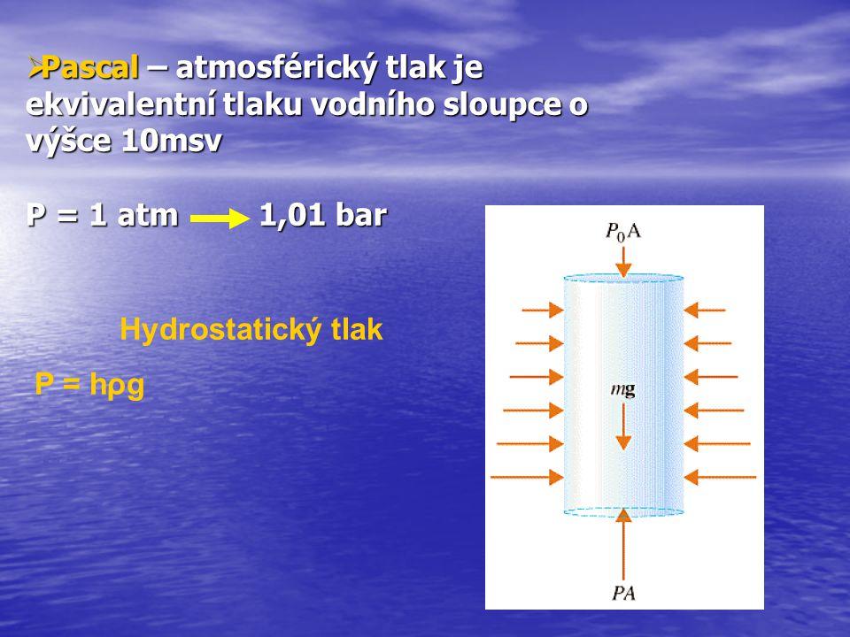 Normální stav Po prvním ponoru Po povrchovém intervalu Po druhém ponoru Saturace dusíkem