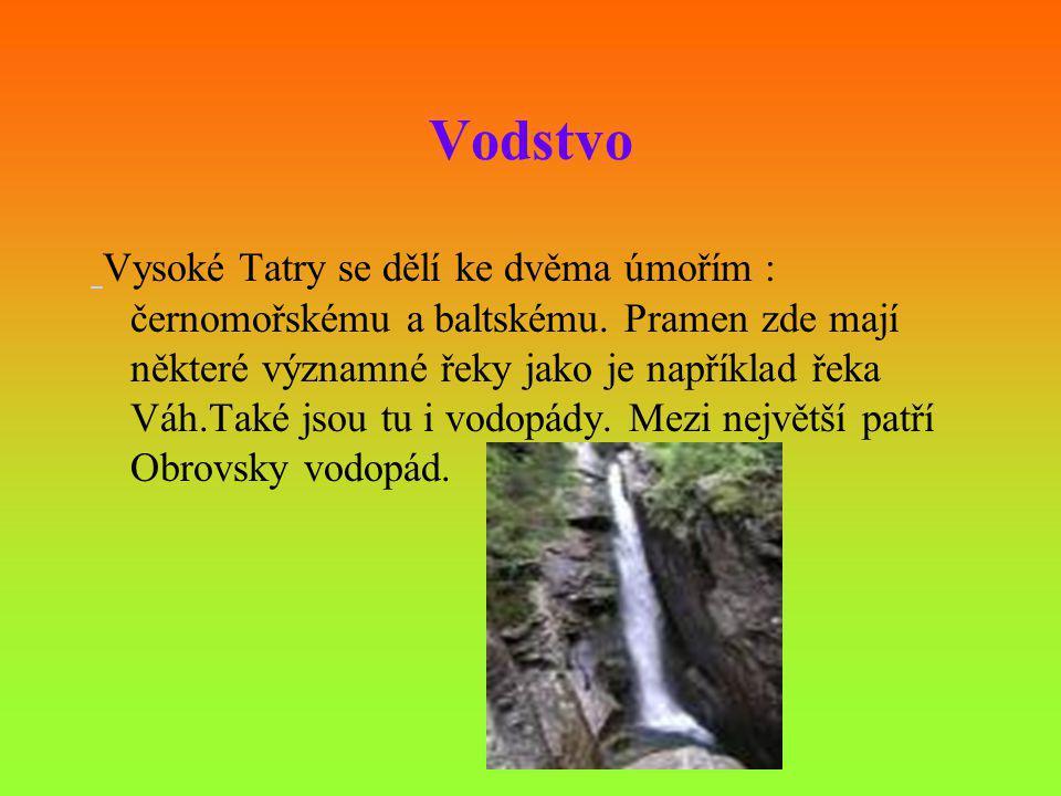 Vodstvo Vysoké Tatry se dělí ke dvěma úmořím : černomořskému a baltskému. Pramen zde mají některé významné řeky jako je například řeka Váh.Také jsou t
