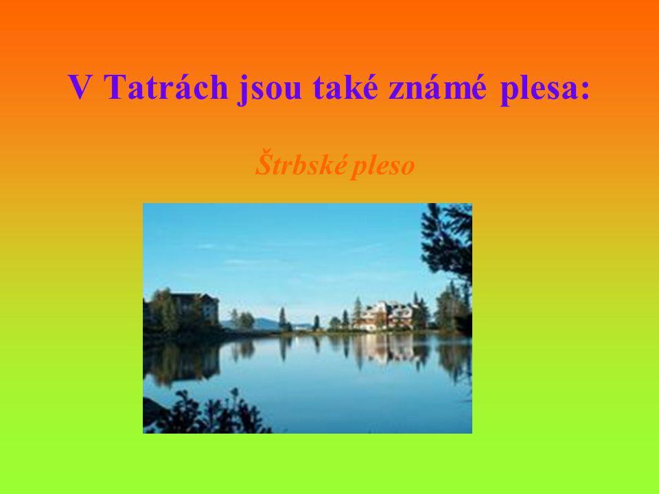 V Tatrách jsou také známé plesa: Štrbské pleso