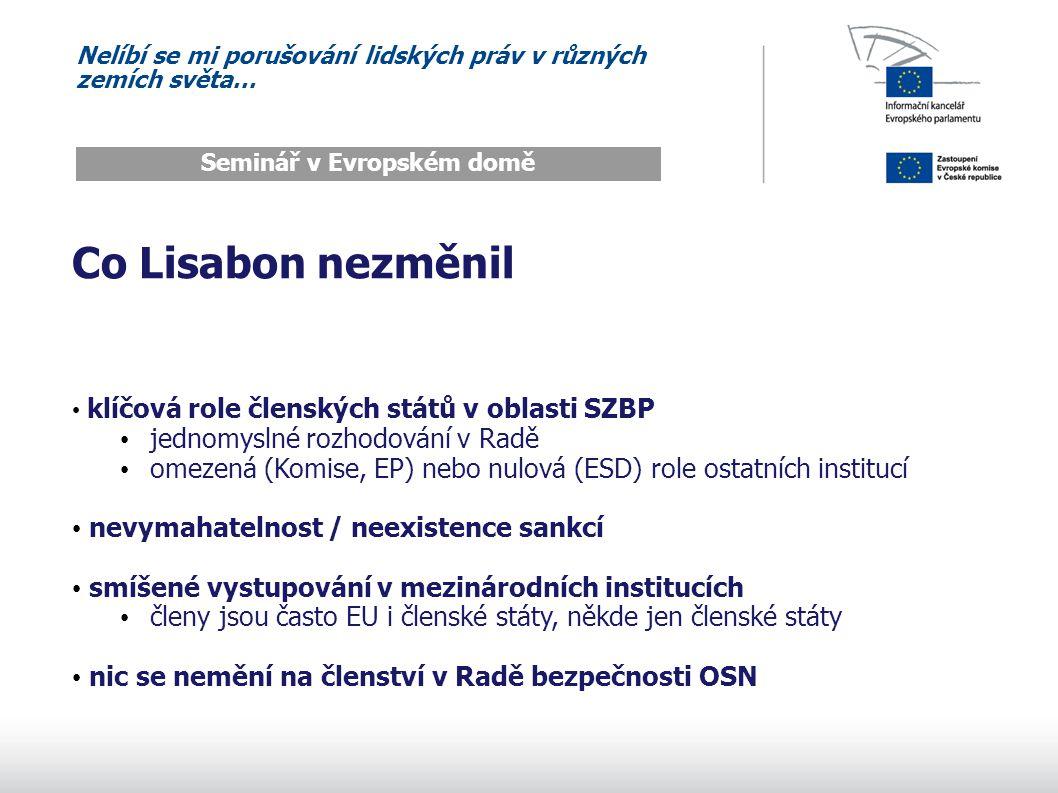 Nelíbí se mi porušování lidských práv v různých zemích světa… Seminář v Evropském domě Co Lisabon nezměnil klíčová role členských států v oblasti SZBP