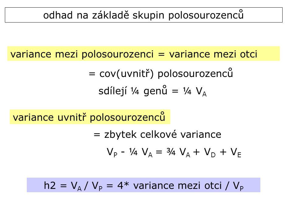 odhad na základě skupin polosourozenců variance mezi polosourozenci = variance mezi otci = cov(uvnitř) polosourozenců sdílejí ¼ genů = ¼ V A variance