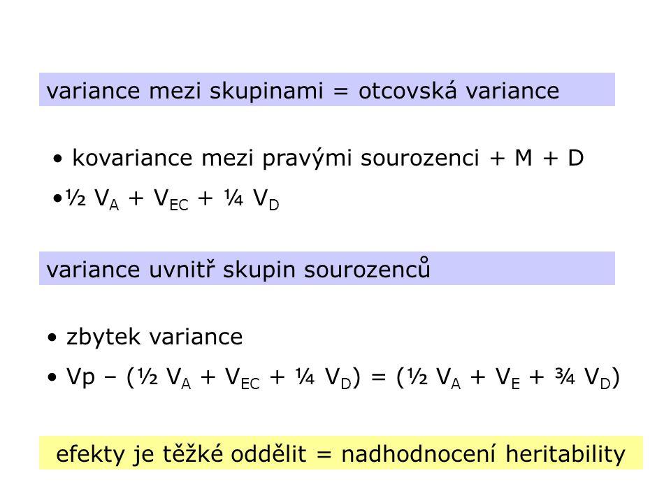 variance mezi skupinami = otcovská variance kovariance mezi pravými sourozenci + M + D ½ V A + V EC + ¼ V D variance uvnitř skupin sourozenců zbytek v