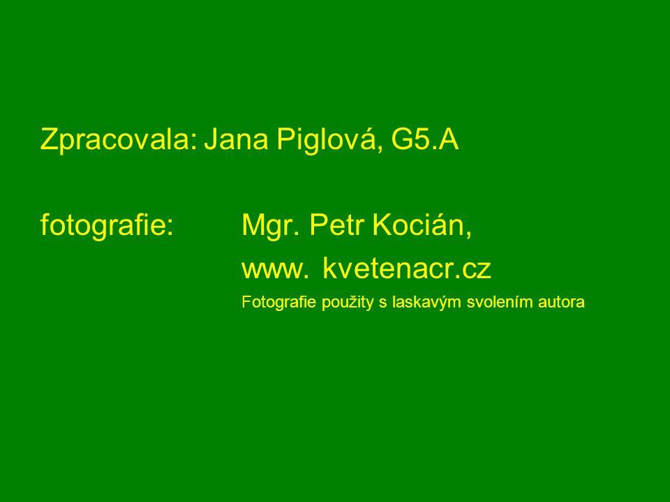 Zpracovala: Jana Piglová, G5.A fotografie: Mgr. Petr Kocián, www. kvetenacr.cz Fotografie použity s laskavým svolením autora