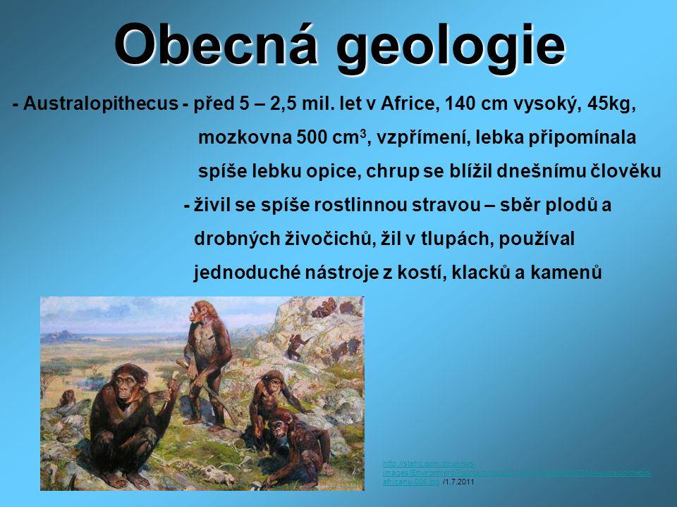 Obecná geologie - Australopithecus - před 5 – 2,5 mil. let v Africe, 140 cm vysoký, 45kg, mozkovna 500 cm 3, vzpřímení, lebka připomínala spíše lebku