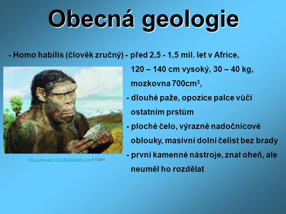 Obecná geologie - Homo habilis (člověk zručný) - před 2,5 - 1,5 mil. let v Africe, 120 – 140 cm vysoký, 30 – 40 kg, mozkovna 700cm 3, - dlouhé paže, o