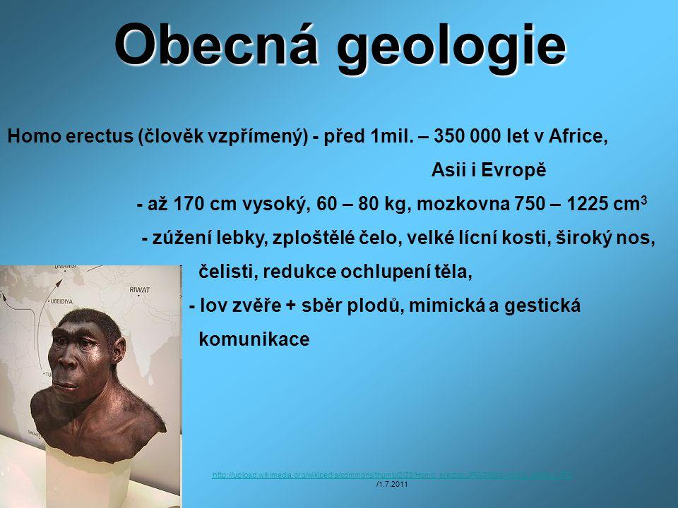 Obecná geologie Homo erectus (člověk vzpřímený) - před 1mil. – 350 000 let v Africe, Asii i Evropě - až 170 cm vysoký, 60 – 80 kg, mozkovna 750 – 1225