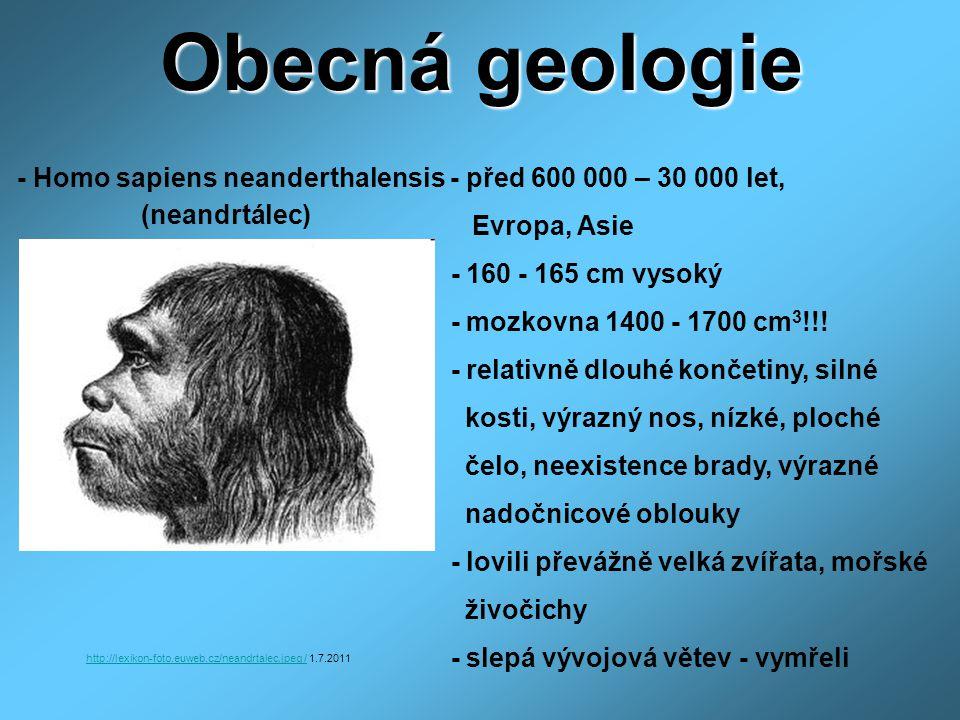 Obecná geologie - Homo sapiens neanderthalensis - před 600 000 – 30 000 let, Evropa, Asie - 160 - 165 cm vysoký - mozkovna 1400 - 1700 cm 3 !!! - rela