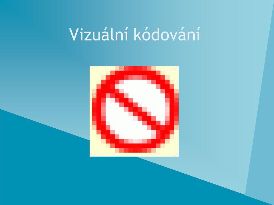Vizuální kódování