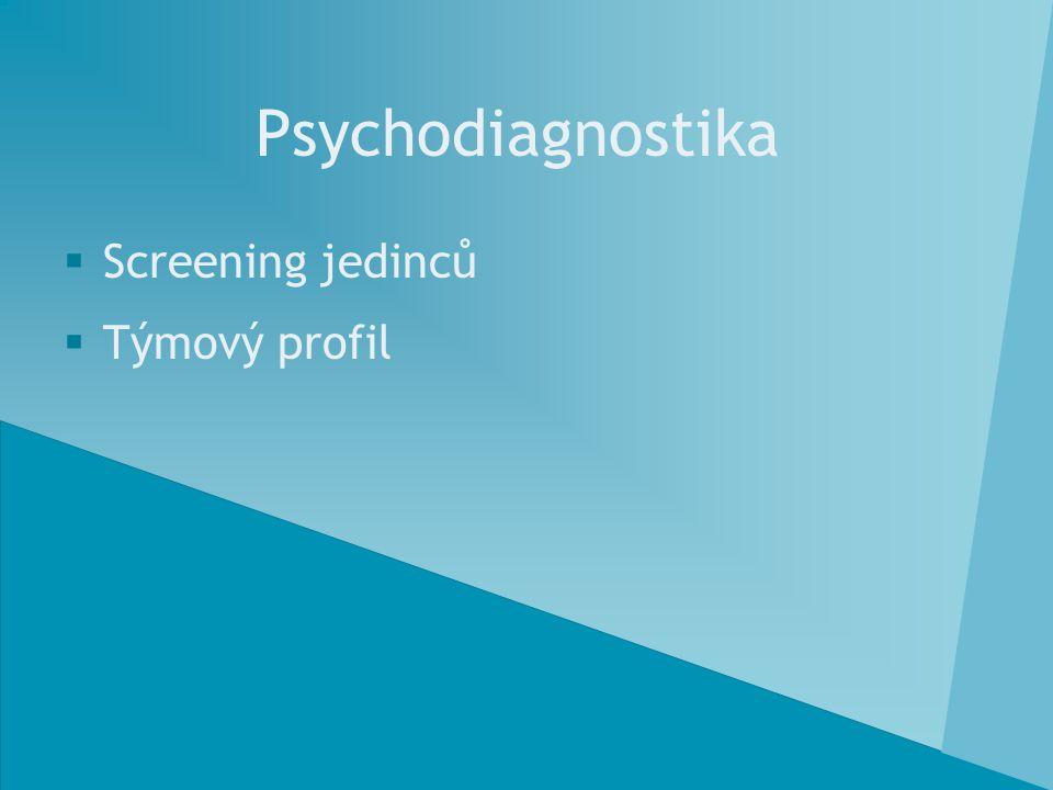 Psychodiagnostika  Screening jedinců  Týmový profil