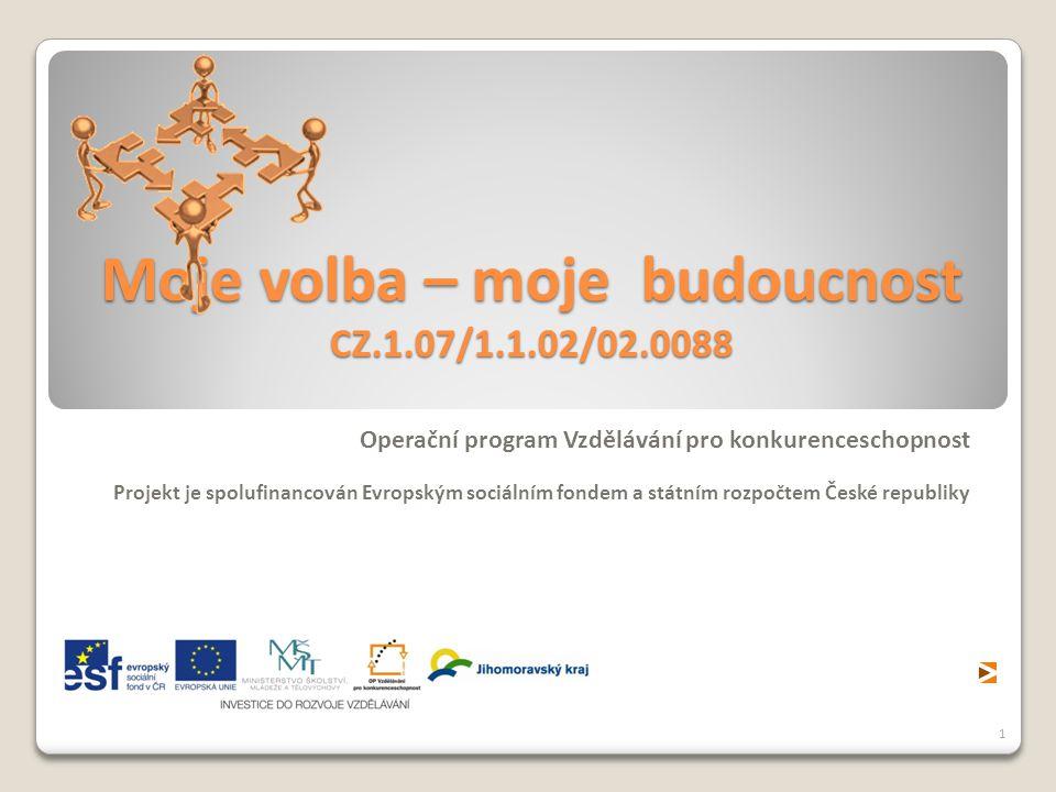 Moje volba – moje budoucnost CZ.1.07/1.1.02/02.0088 Operační program Vzdělávání pro konkurenceschopnost Projekt je spolufinancován Evropským sociálním fondem a státním rozpočtem České republiky 1