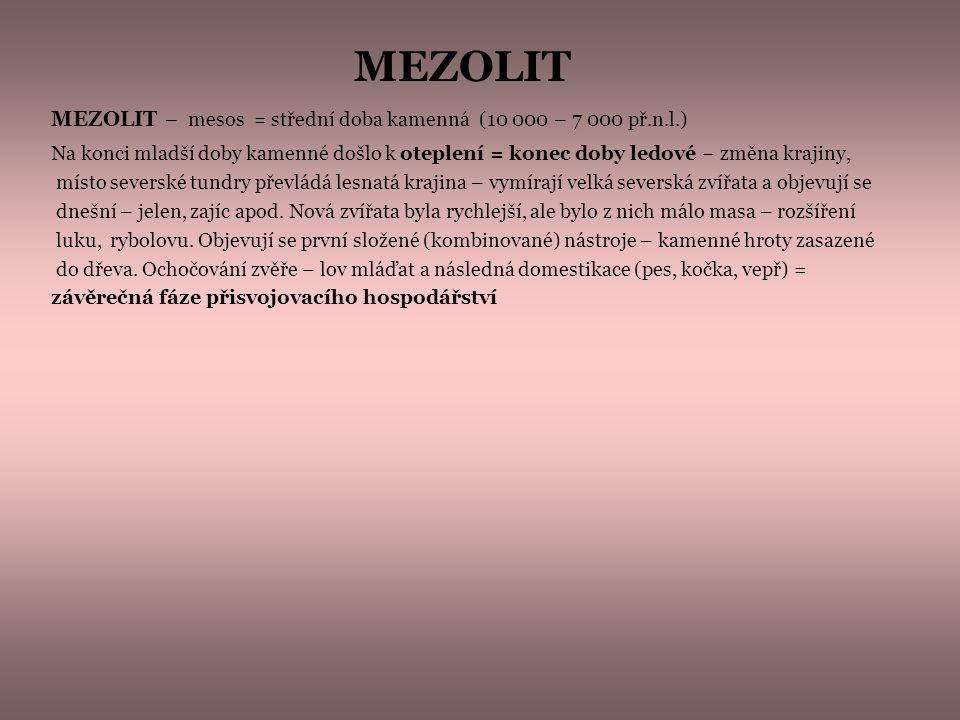 MEZOLIT – mesos = střední doba kamenná (10 000 – 7 000 př.n.l.) Na konci mladší doby kamenné došlo k oteplení = konec doby ledové – změna krajiny, mís
