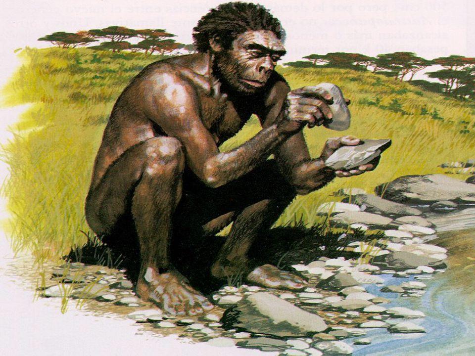 Vývoj pravěku Člověk Člověk má společné předchůdce, asi před 14 mil.