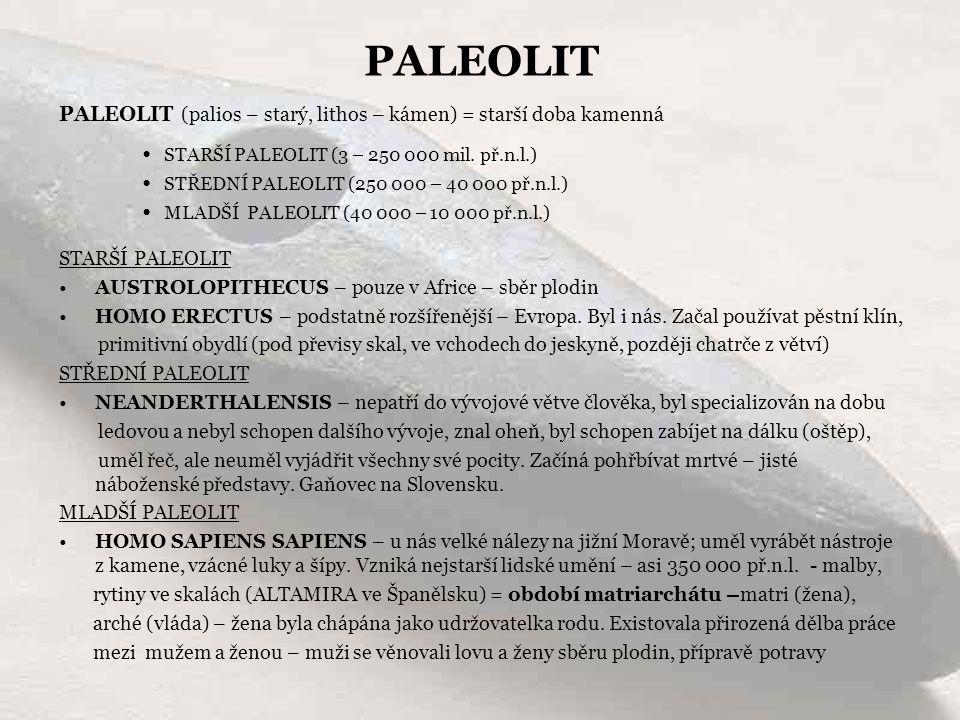 PALEOLIT (palios – starý, lithos – kámen) = starší doba kamenná STARŠÍ PALEOLIT AUSTROLOPITHECUS – pouze v Africe – sběr plodin HOMO ERECTUS – podstat