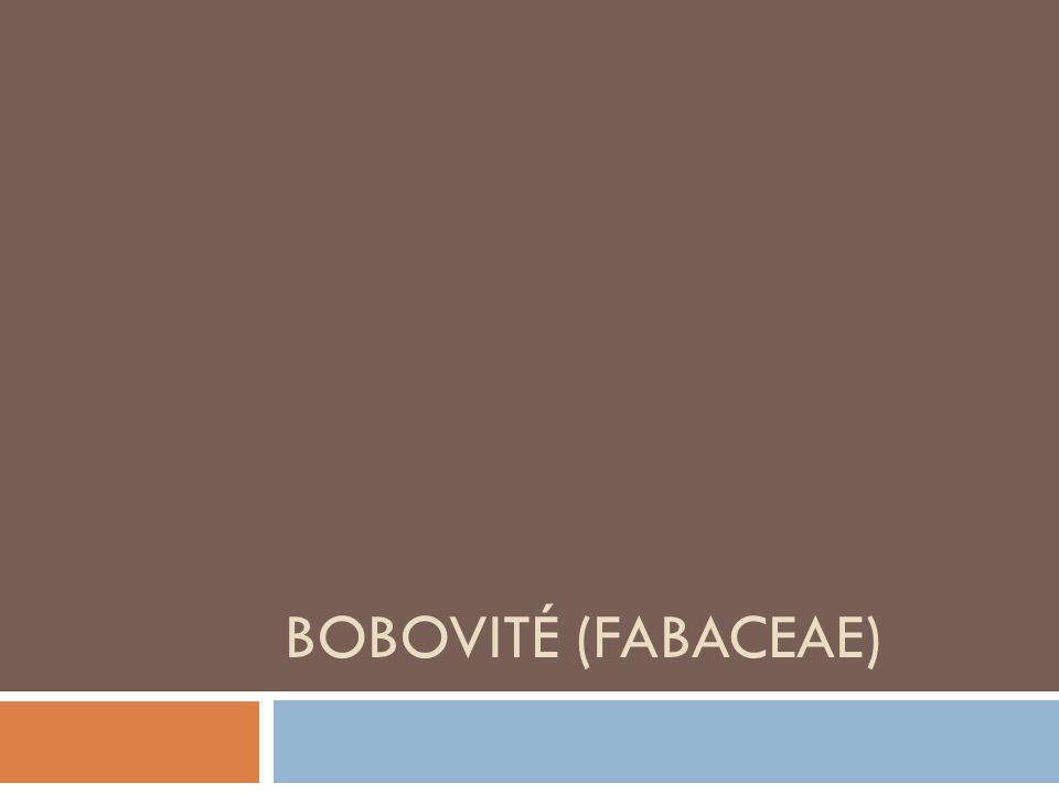 BOBOVITÉ (FABACEAE)