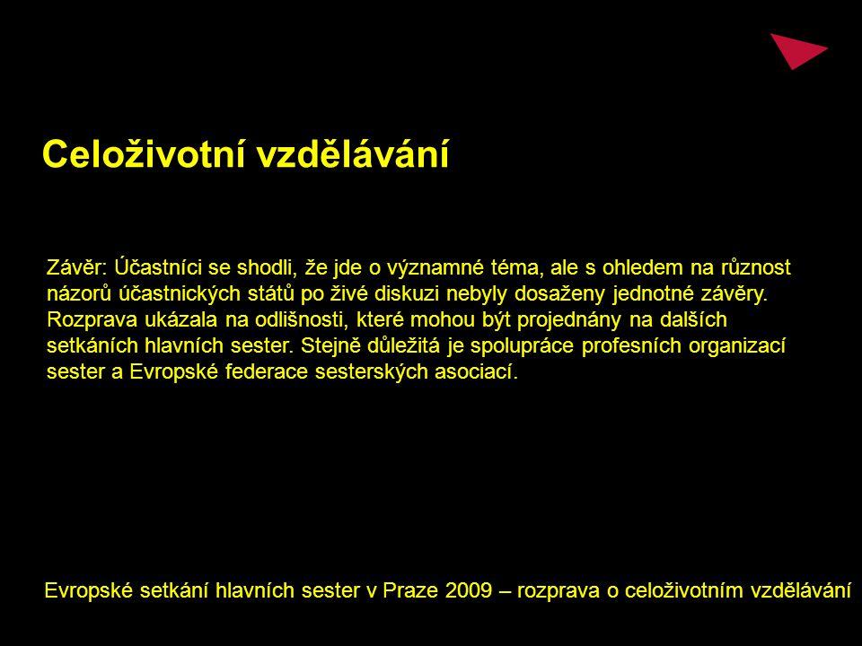 Celoživotní vzdělávání Evropské setkání hlavních sester v Praze 2009 – rozprava o celoživotním vzdělávání Závěr: Účastníci se shodli, že jde o významné téma, ale s ohledem na různost názorů účastnických států po živé diskuzi nebyly dosaženy jednotné závěry.