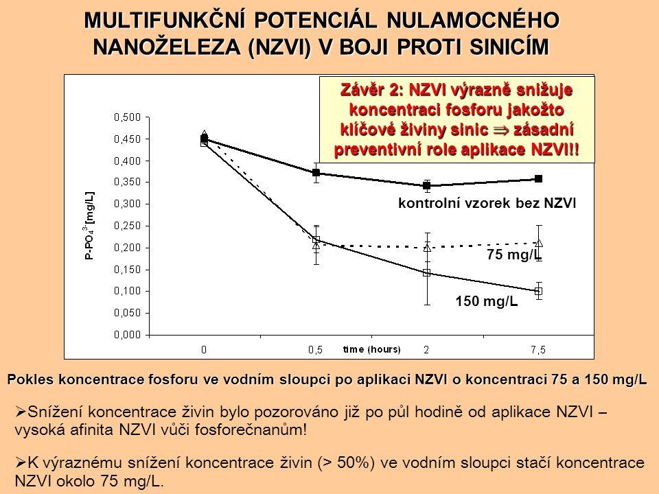 MULTIFUNKČNÍ POTENCIÁL NULAMOCNÉHO NANOŽELEZA (NZVI) V BOJI PROTI SINICÍM Závěr 3: Po aplikaci NZVI dochází k úplné destrukci buněk  ireversibilní mechanismus účinku Buňky sinic v kultivačním médiu před aplikací NZVI Studium mechanismu účinku pomocí transmisní elektronové mikroskopie (TEM) Nanočástice NZVI v produktu Ecopure se speciální povrchovou úpravou TEM snímky po aplikaci nZVI Pravděpodobné příčiny destrukce buněk: oxidativní stres vs migrace vznikajících iontů železa dovnitř buněk a následná precipitace hydroxidu ve změněných podmínkách pH, Eh organické zbytky buněk sinic aglomeráty hydroxidu železitého PŘED PŘED PO