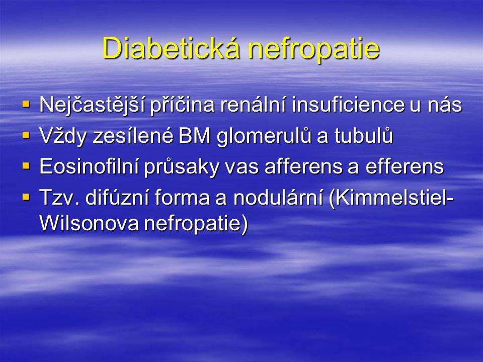 Diabetická nefropatie  Nejčastější příčina renální insuficience u nás  Vždy zesílené BM glomerulů a tubulů  Eosinofilní průsaky vas afferens a effe