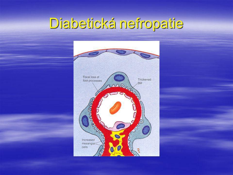 Diabetická nefropatie