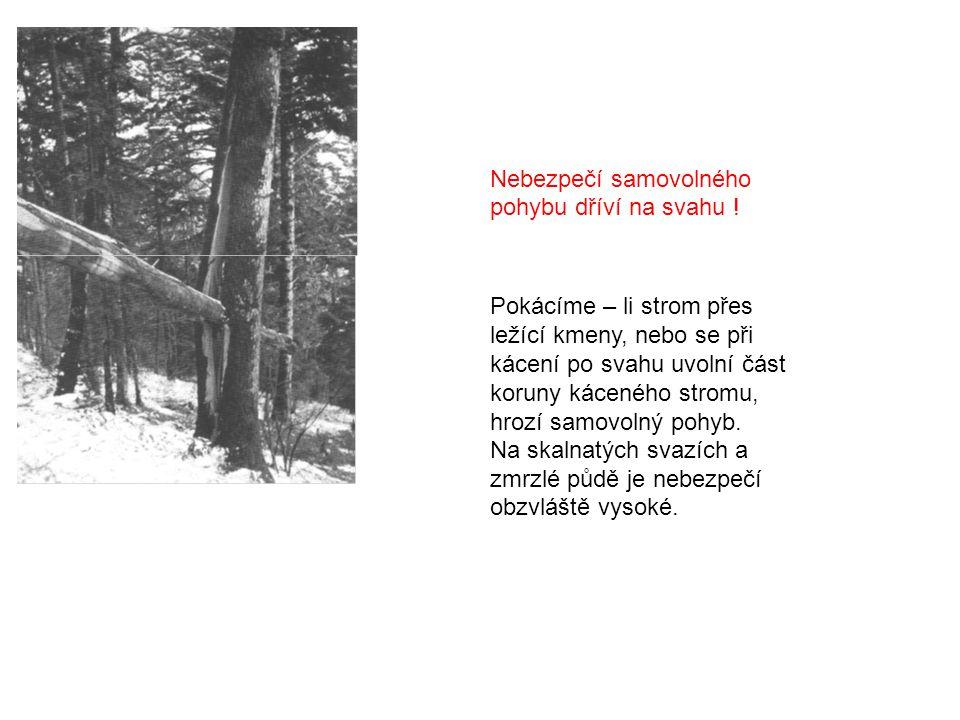 Nebezpečí samovolného pohybu dříví na svahu ! Pokácíme – li strom přes ležící kmeny, nebo se při kácení po svahu uvolní část koruny káceného stromu, h