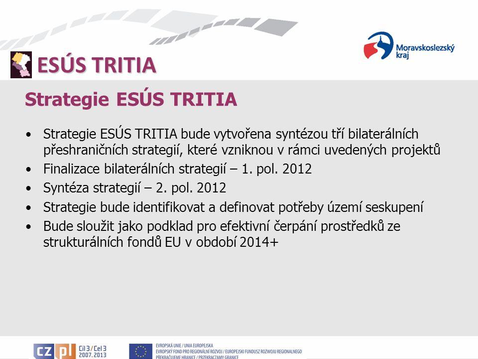 ESÚS TRITIA Strategie ESÚS TRITIA Strategie ESÚS TRITIA bude vytvořena syntézou tří bilaterálních přeshraničních strategií, které vzniknou v rámci uvedených projektů Finalizace bilaterálních strategií – 1.