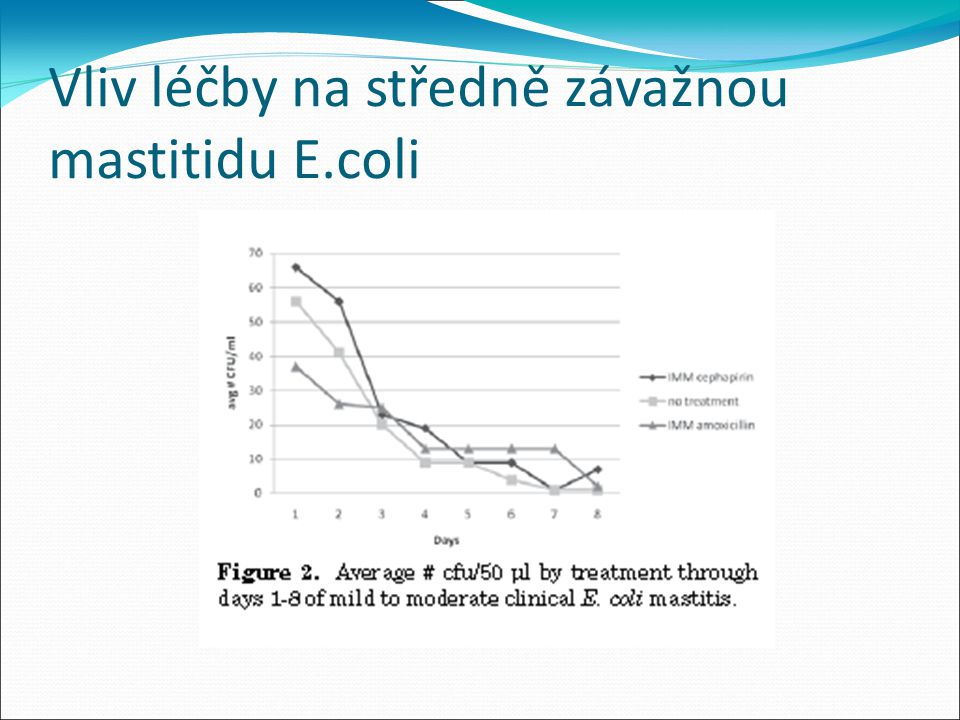 Vliv léčby na středně závažnou mastitidu E.coli