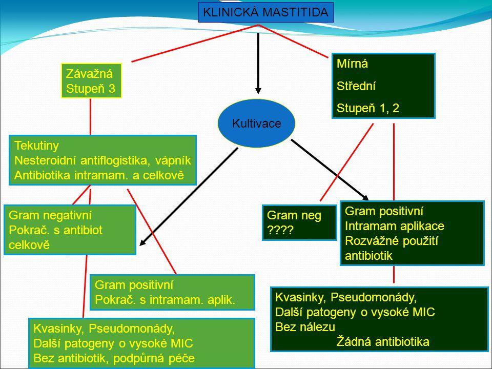 KLINICKÁ MASTITIDA Kultivace Závažná Stupeň 3 Mírná Střední Stupeň 1, 2 Tekutiny Nesteroidní antiflogistika, vápník Antibiotika intramam.
