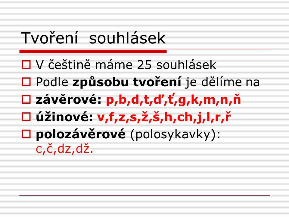 Tvoření souhlásek  V češtině máme 25 souhlásek  Podle způsobu tvoření je dělíme na  závěrové: p,b,d,t,ď,ť,g,k,m,n,ň  úžinové: v,f,z,s,ž,š,h,ch,j,l