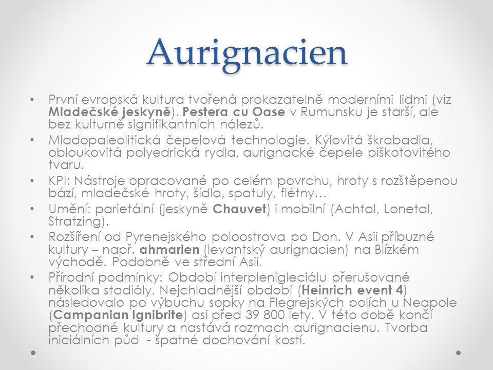 Aurignacien První evropská kultura tvořená prokazatelně moderními lidmi (viz Mladečské jeskyně ).