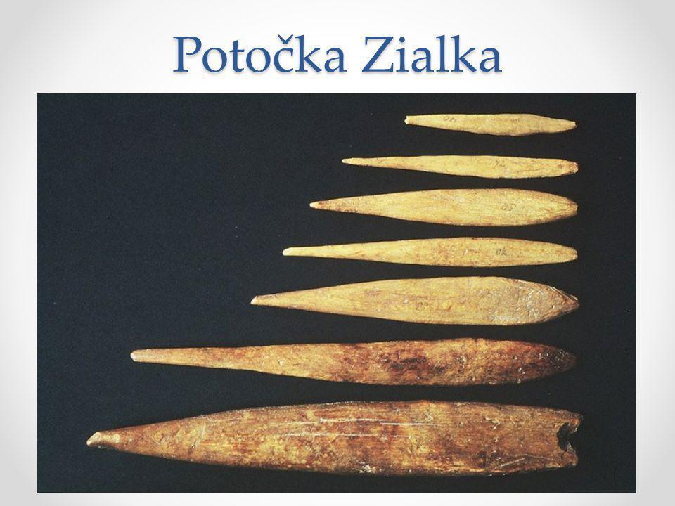 Potočka Zialka