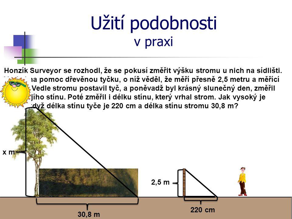 Užití podobnosti v praxi Honzík Surveyor se rozhodl, že se pokusí změřit výšku stromu u nich na sídlišti.