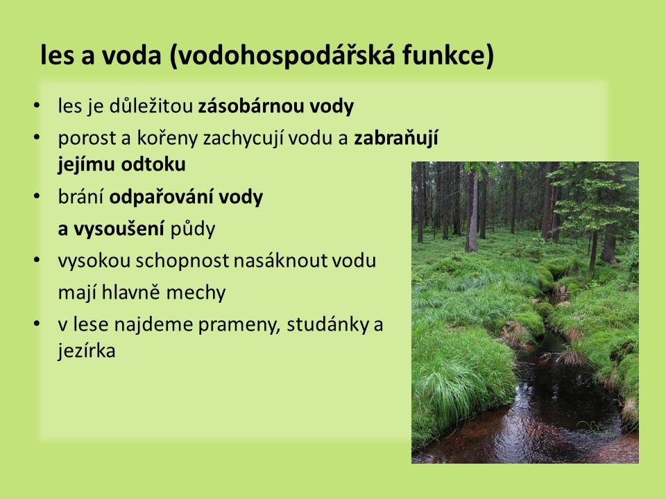 les a voda (vodohospodářská funkce) les je důležitou zásobárnou vody porost a kořeny zachycují vodu a zabraňují jejímu odtoku brání odpařování vody a vysoušení půdy vysokou schopnost nasáknout vodu mají hlavně mechy v lese najdeme prameny, studánky a jezírka
