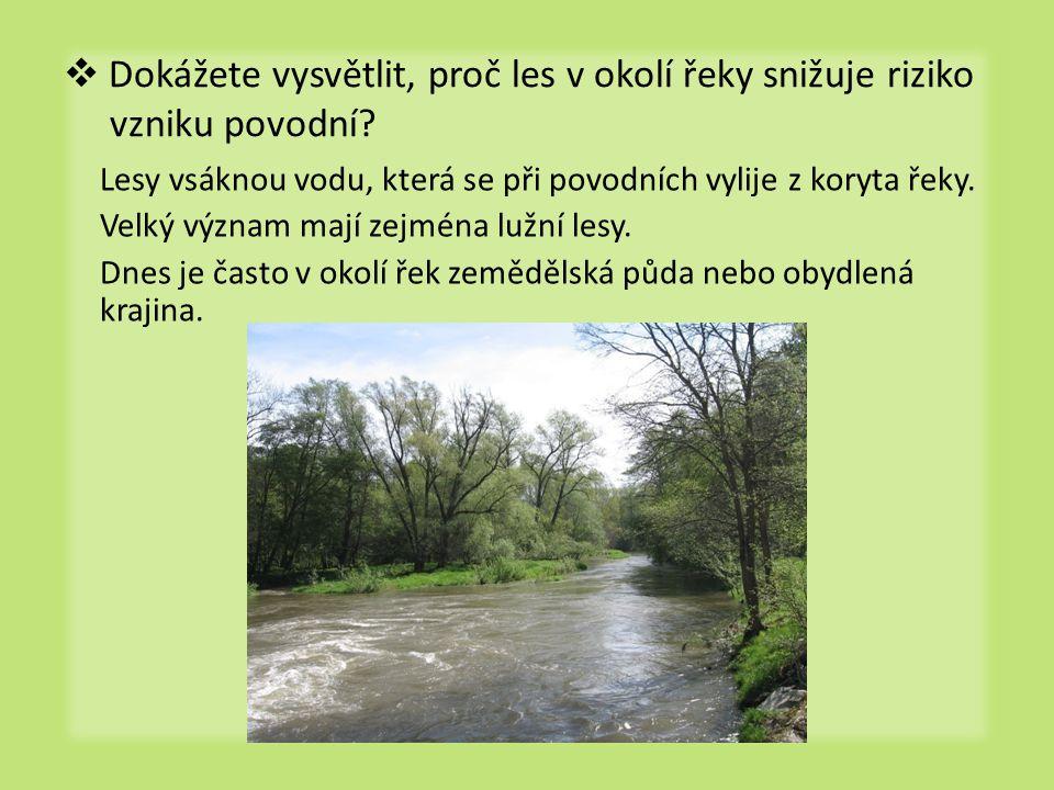  Dokážete vysvětlit, proč les v okolí řeky snižuje riziko vzniku povodní? Lesy vsáknou vodu, která se při povodních vylije z koryta řeky. Velký význa