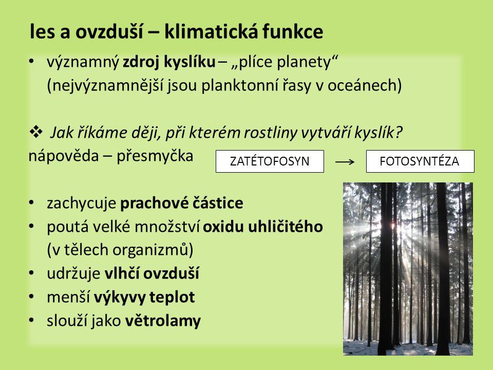 """les a ovzduší – klimatická funkce významný zdroj kyslíku – """"plíce planety (nejvýznamnější jsou planktonní řasy v oceánech)  Jak říkáme ději, při kterém rostliny vytváří kyslík."""