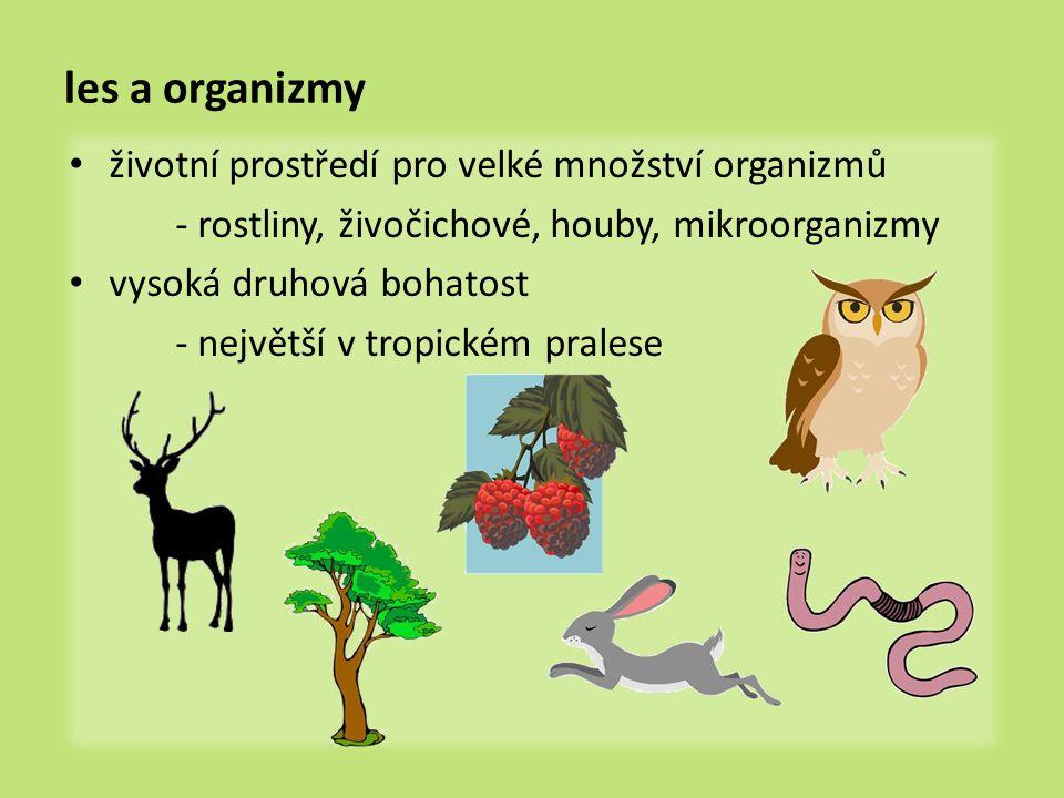 les a organizmy životní prostředí pro velké množství organizmů - rostliny, živočichové, houby, mikroorganizmy vysoká druhová bohatost - největší v tropickém pralese